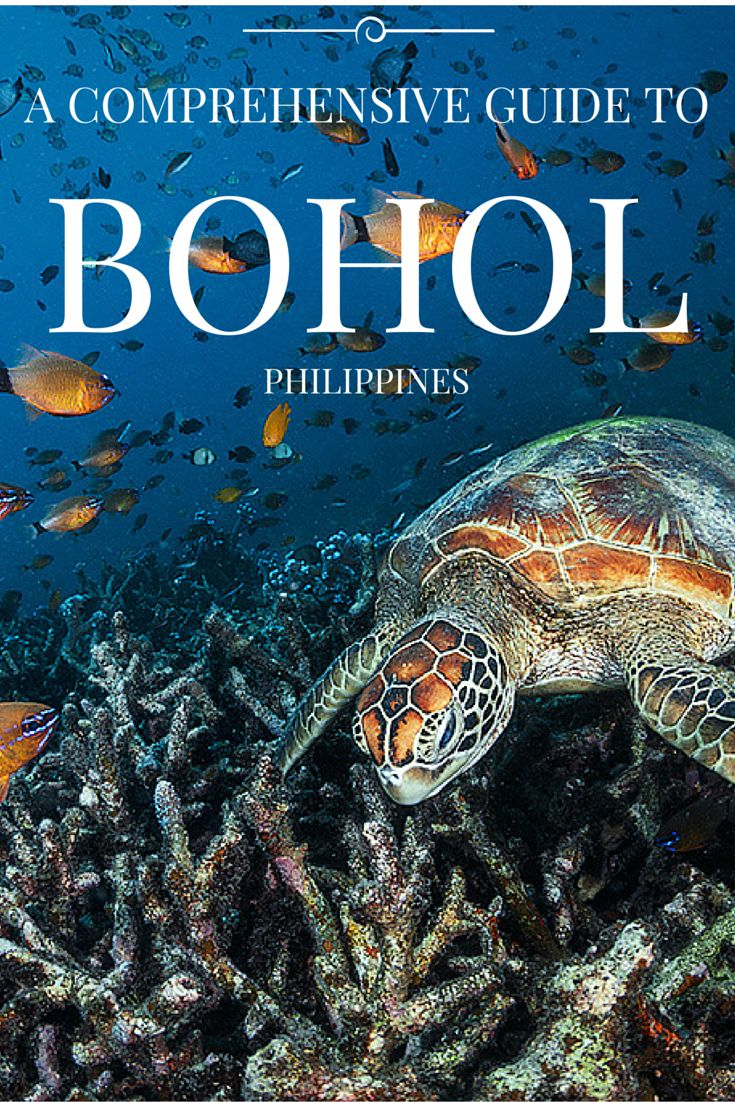 A Comprehensive Guide to Bohol, Philippines