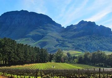 Stellenbosch, South Africa - ISA