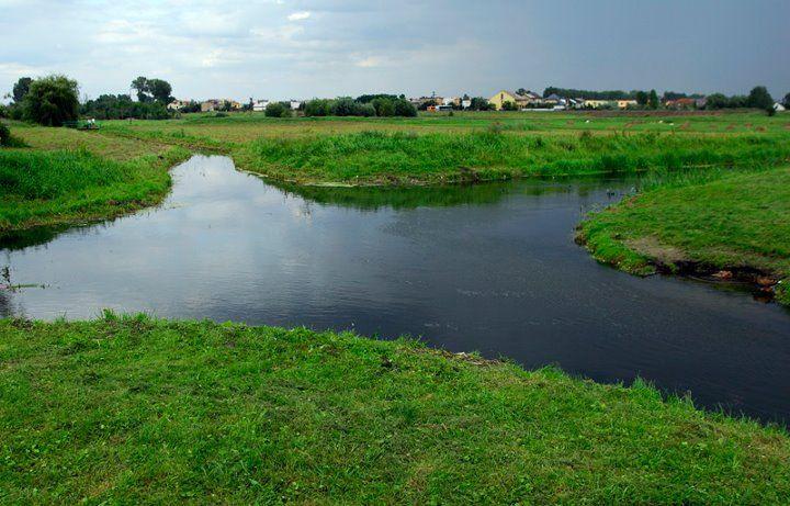 Crossrivers. River bifucation in Wągrowiec