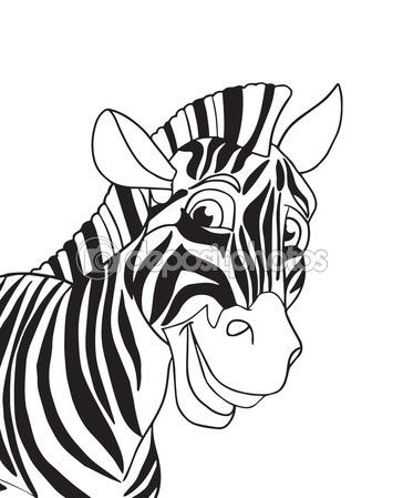 25 beautiful Zebra illustration ideas on Pinterest  Search png