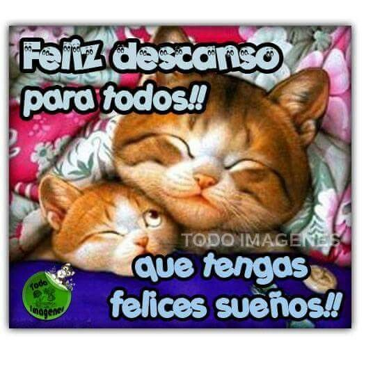 Good Morning Everybody Que Quiere Decir : Best images about buenas noches on pinterest sweet