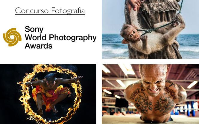 Concurso de Fotografia Sony World Photography Awards 2016