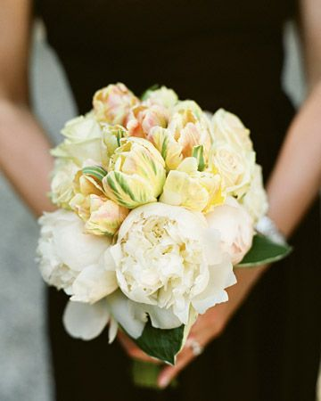 A bouquet of Dutch parrot tulips and white peonies in a collar of hosta foliage