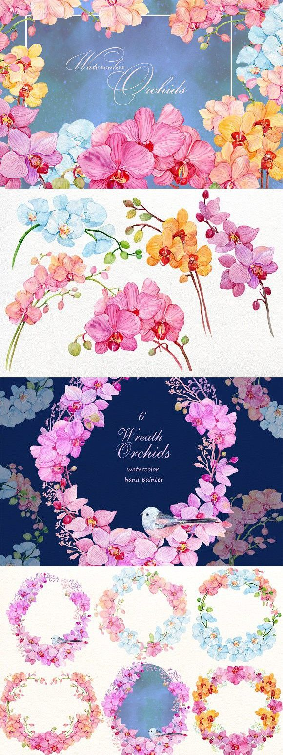 watercolor clipart/orchids /wreaths. Watercolor Flowers