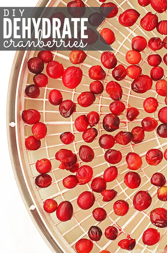 Easy tutorial for how to dehydrate cranberries. When cranberries are in season, buy an extra bag and stock up! Homemade dehydrated cranberries are so easy to make, and this post includes the breakdown of the cost of making them yourself, so you can decide if it's cheaper to make them or buy them in your area! :: DontWastetheCrumbs.com: