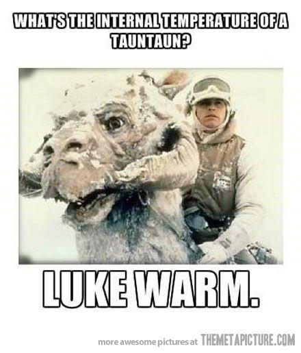 A tauntaun's temperature…