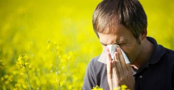 Allergie: rimedi naturali per alleviare i sintomi