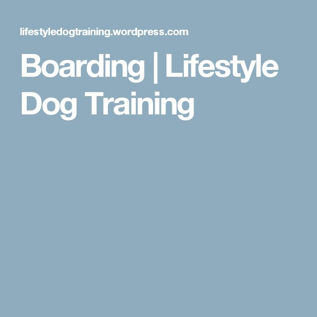 Boarding | Lifestyle Dog Training