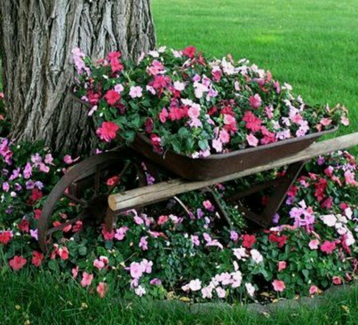 18 best wheelbarrow planter images on pinterest for Yard planter ideas