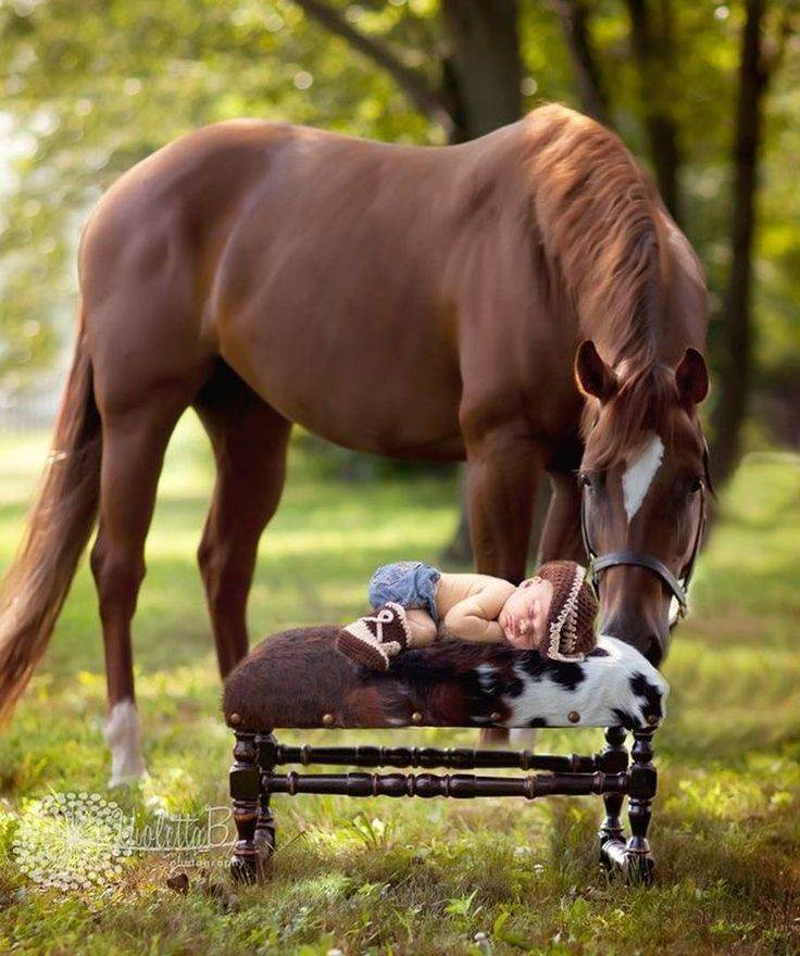 I Hope you're comfortable kid O'le Bessie and I had shared ...