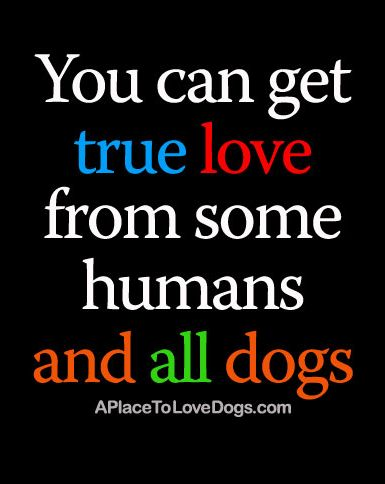 You can get true love from some humans and all dogs