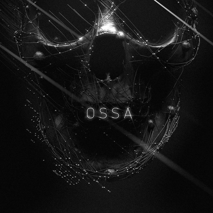 OSSA jewelry stills on Behance