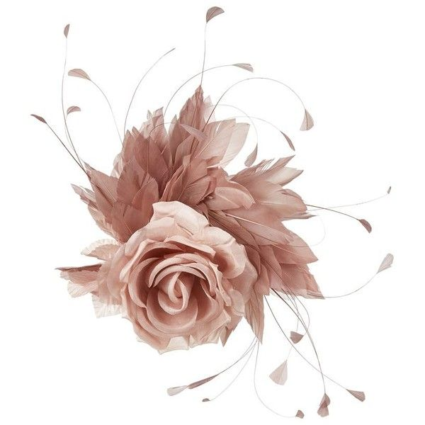 Nerida Fraiman Rose Feather Fascinator (1.160 RON) ❤ liked on Polyvore featuring accessories, hair accessories, feather fascinator, pink fascinator hats, fascinator hat, hair fascinators and leaf hair accessories