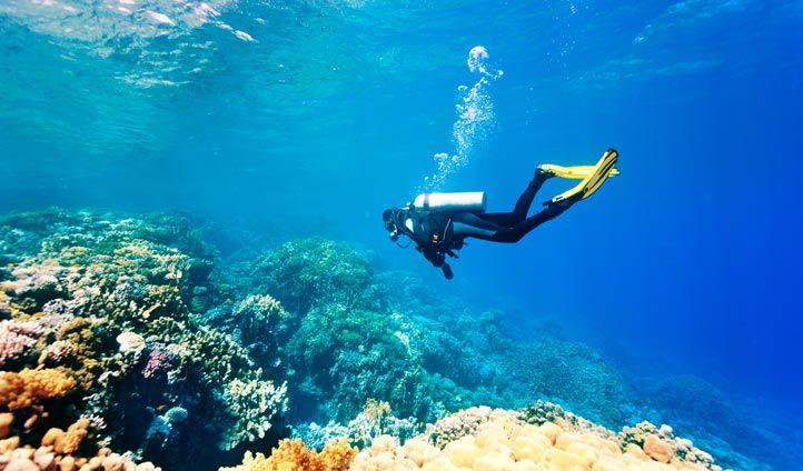 Top places to scuba dive
