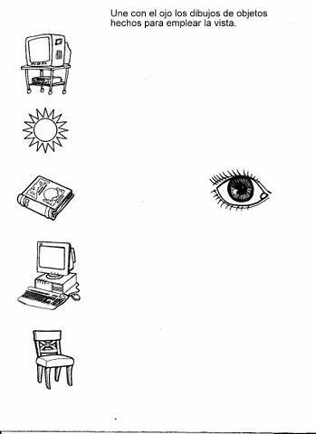 5 smyslů - zrak - přiřaď