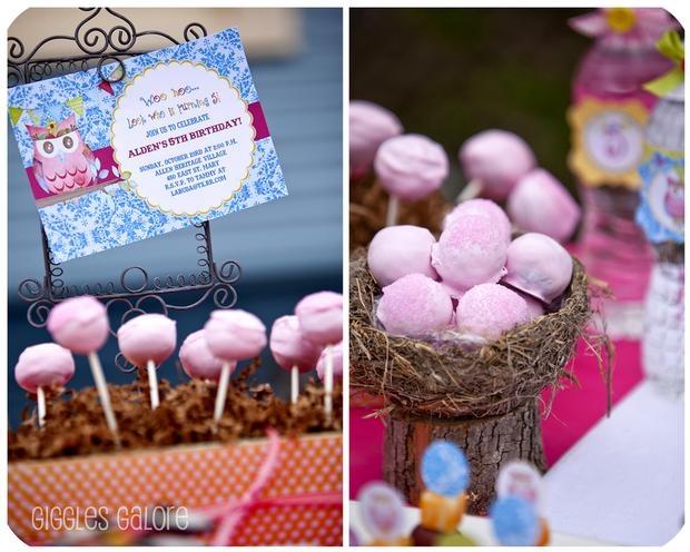 owl eggs cake pops | Baby shower stuff | Pinterest