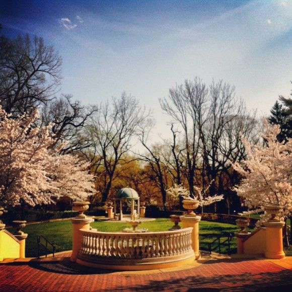 Omni Shoreham: Washington DC wedding venue readies for wedding season