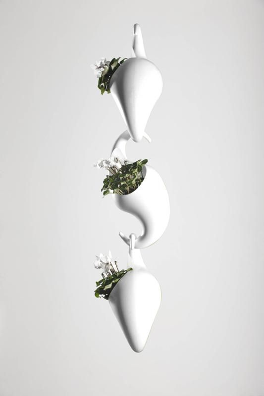 Schön Adam Cornish. Monkey Pot Planters In Rotation
