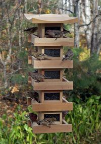 Multi level Pagoda Bird Feeder with finches. Wow, highrise bird feeder allows for many birds to comfortably gather at once.
