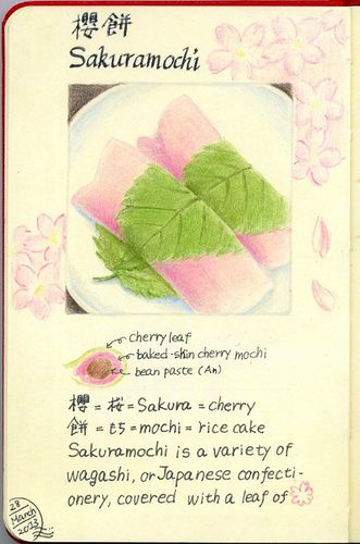 2013_03_28_sakuramochi_01    Sakuramochi is a variety of wagashi, or Japanese confectionery, covered with a leaf of sakura .      For this drawing I used:  Pigma,Artpen,  Faber-Castell Polychromes  and Moleskine sketchbook.    painting & photo copyright Belta(WAKABAYASHI Mayumi). all rights reserved.