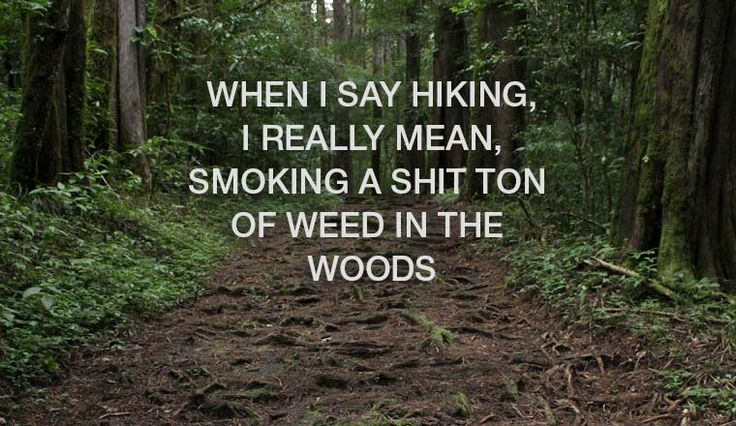 Do you go hiking while stoned?