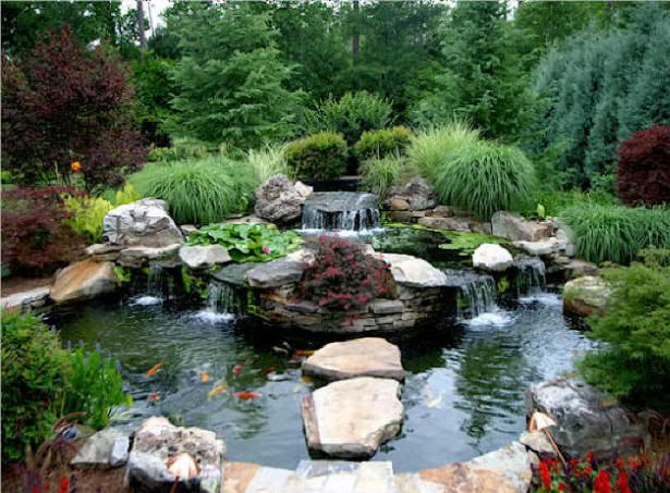 1000 images about back yard ponds on pinterest backyard for Front yard fish pond