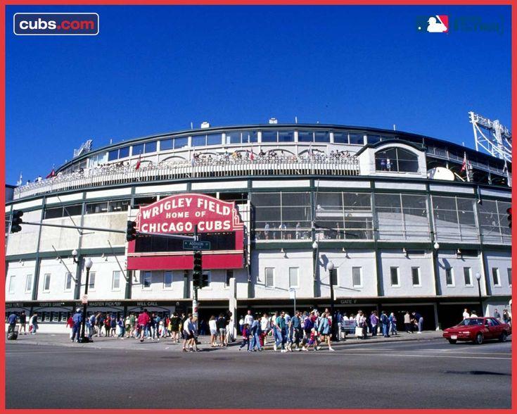 Chicago Sports Wallpaper Iphone 6: Best 25+ Cubs Wallpaper Ideas On Pinterest