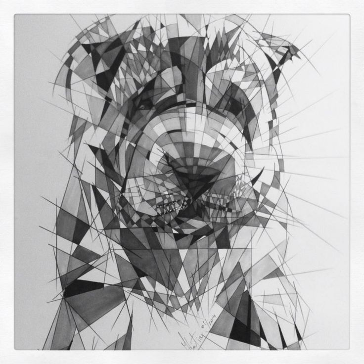 """Shattered"" Drawings by Katia - Teddy The Pup, Markers and pencils"