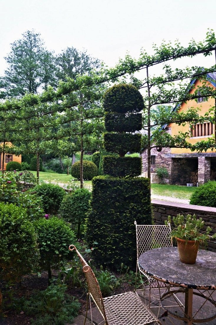 Arne Maynard garden, Espaliered crabapples fence it in to form an intimate spot for afternoon tea