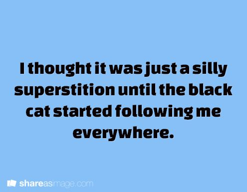 I thought it was just a silly superstition until the black cat started following me everywhere.