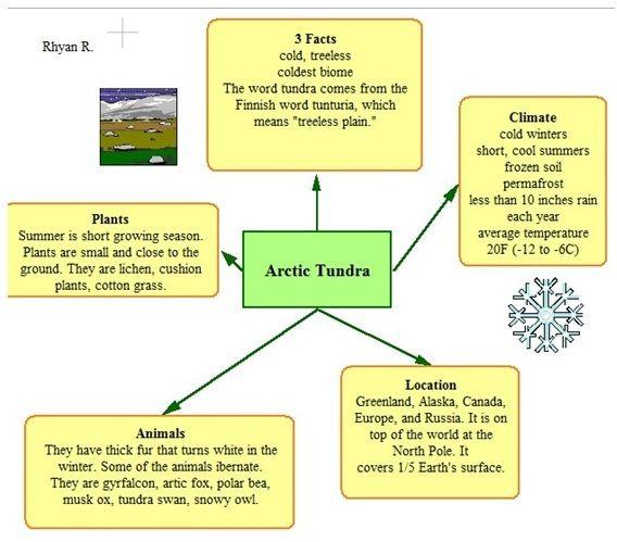 25+ best ideas about Arctic tundra on Pinterest | Arctic tundra ...