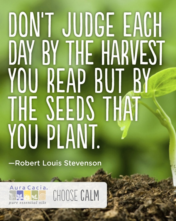 Don't judge each day by the harvest you reap but by the seeds that you plant. ~Robert Louis Stevenson