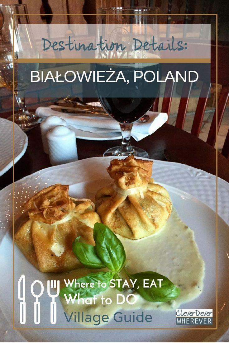 Bialoweiza Primeval Forest   Visit Poland   Travel Poland   Polish Forest
