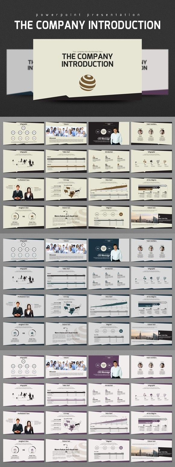 The Company Introduction Business Infographic 2200 The