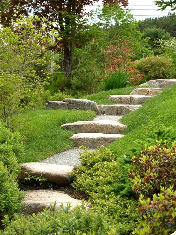 2562 best stone    paving images on pinterest