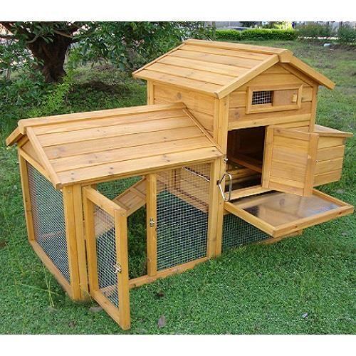 Pollaio in legno completo di giardino coperto, posatoio, cassetto porta uova, cassetto per la pulizia zincato, tetto apribile. Ideale per 2 ovaiole