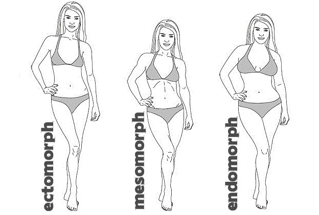 Body Type Workouts - Endomorph Female — Tee Major - The Official Website for Tee Major Fitness