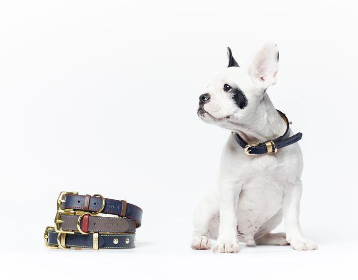 Rufino Handmade Dog collars