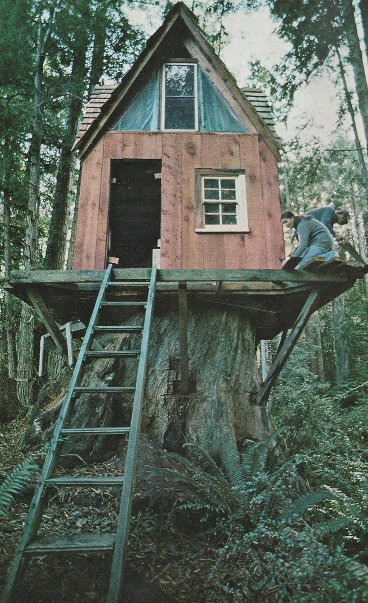 190 best tree houses images on pinterest treehouses