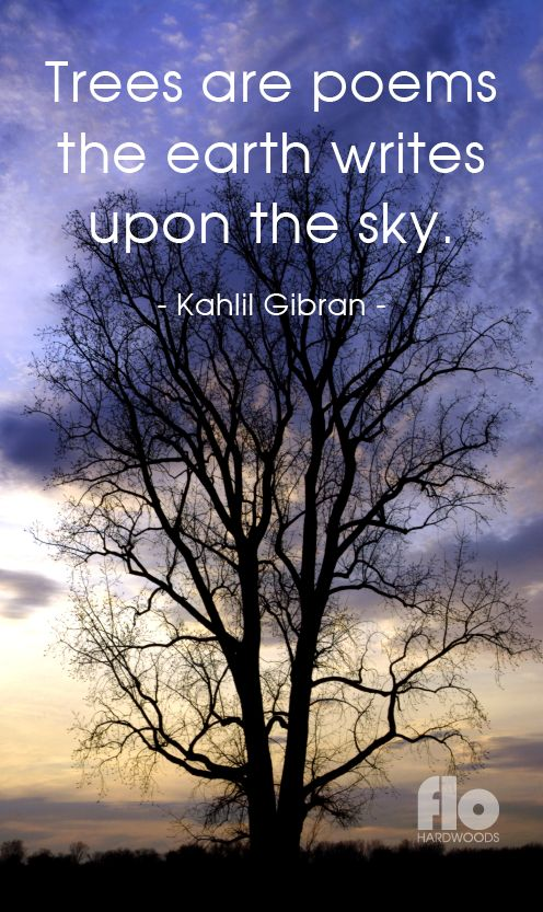 Trees are poems the earth writes upon the sky. ~Kahlil Gibran  #FLOhardwoods