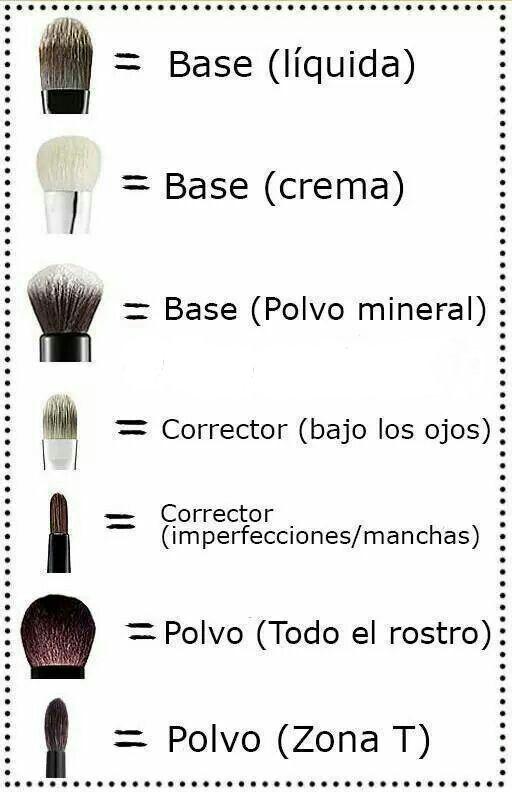 Tipos de Brochas de Maquillaje y para que se usan