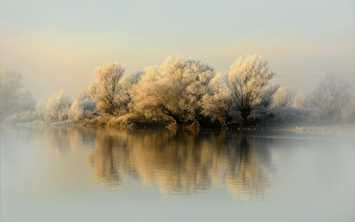 Download the Fog,Lake,Trees, Best HD Wallpapers, Widescreen Wallpapers, Mobile Wallpapers for FREE in like5.com