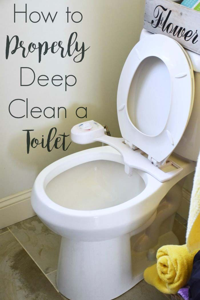 How To Properly Deep Clean A Toilet Stock Toilet Paper Toilet