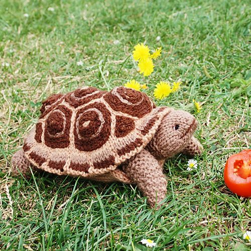 Ravelry: PIE CRUST the TORTOISE turtle pattern by Debi Birkin  So beyond cute. I might be learning how to knit just to make this.