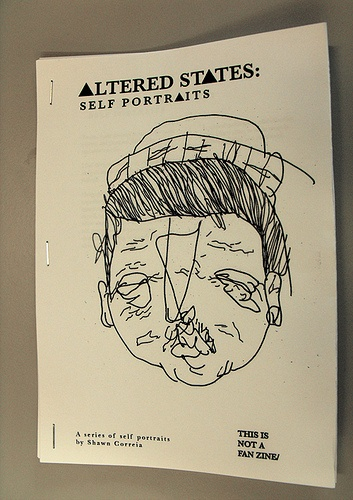 oo, what if I turned the portrait project idea into a zine.....(the visual language I desire)
