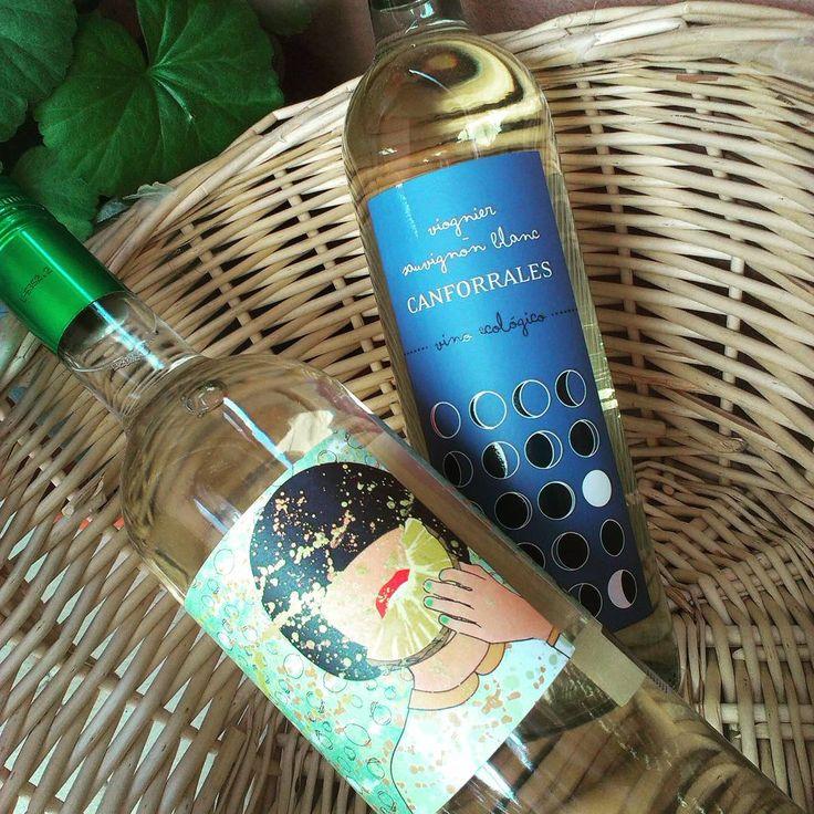 Se empieza a notar la llegada de la primavera y del buen tiempo, momento ideal para compartit un #Canforrales #ecológico blanco o un Semidulce moscatel airén. http://www.bodegascamposreales.com/tienda/nuestros-vinos/