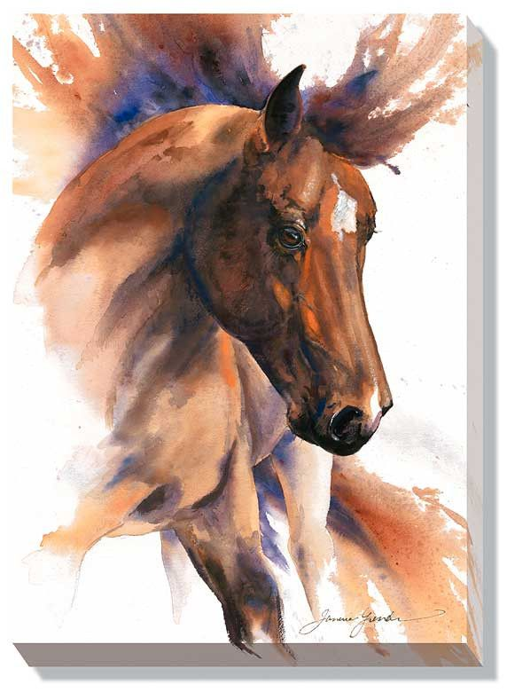 Elegance Horse Wrapped Canvas Print F351030481 | Buffalo Trader Online