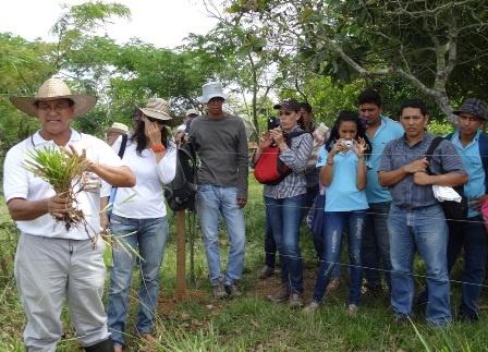 Eventos de intercambio de conocimiento en fincas de la Altillanura colombiana