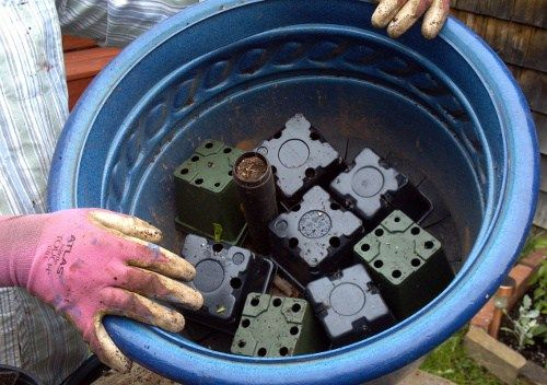 Use empty 4-inch pots to save on soil and container weight.