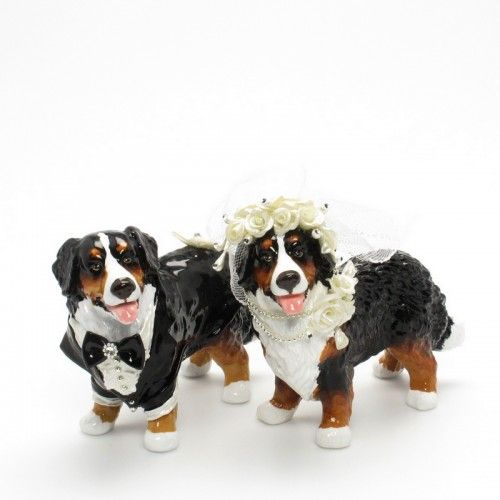 bernese mountain dog wedding cake topper 15 best cat in the hat cake pops images on hat 11267